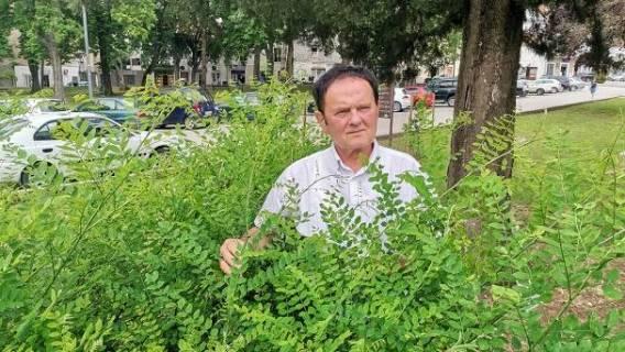 Boris Nikolić-Malora nositelj liste BUZ-a u IX izbornoj jedinici