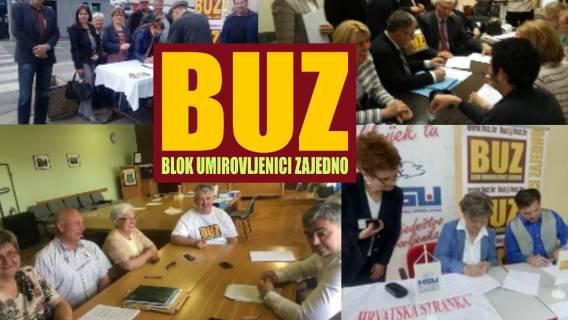 BUZ na lokalnim izborima 2017.